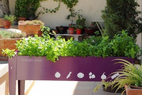Herstera garden le sp cialiste du carr potager i jardindeco blogjardindeco blog - Mon carre potager com ...