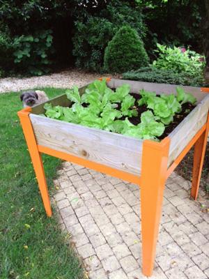 Carr de potager d couvrez le jardin d isabelle cliente - Jardin potager en hauteur ...