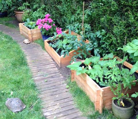 Carr de potager d couvrez le jardin d isabelle cliente i jardindeco for Blog jardin potager
