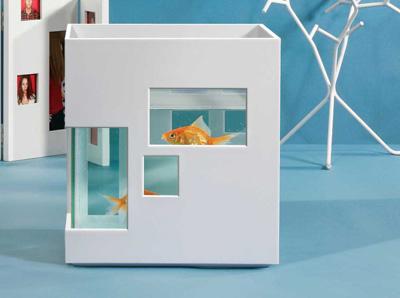 Comment créer un aquarium parfait design ?