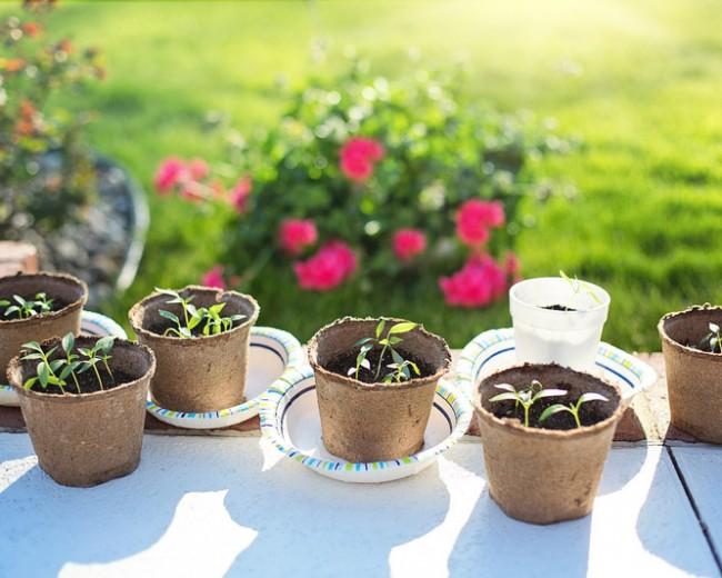 Conseils et tendances déco pour la maison et le jardin à découvrir ...