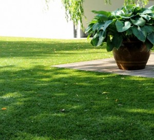 Poser un gazon artificiel dans son jardin